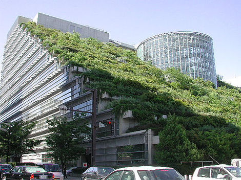 Green Roof Equals Savings