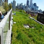 Kids Advocate For Green Roof